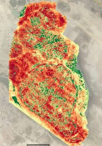 The spectral analysis or 'Normalized Difference Vegetation Index (NDVI) is a graphical indicator that can be used to analyse vegetation. Processing image data with the NDVI algorithm can highlight small, but important variations in the vegetation showing stress or vegetation and potentially revealing details objects below the surface. This field is actively being researched for applications ranging from agricultural productivity to the mapping of minefields.