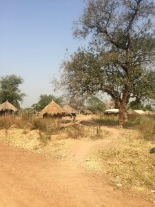 A village in Rhino Camp